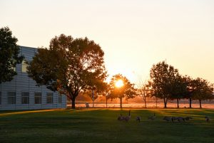 WSU Tri-Cities campus at sunset