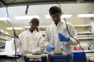 Afrah Aftab and Areeb Aftab, both from Hanford High School, work in the BSEL facility at WSU Tri-Cities