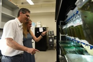 WSU Tri-Cities professor Jim Cooper (left) chats with Amy Verderber about their research on the impact on varying amounts of thyroid hormone in zebrafish