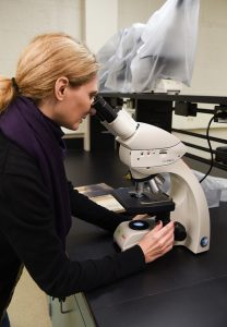 Biology professor Tanya Cheeke works in her lab at WSU Tri-Cities