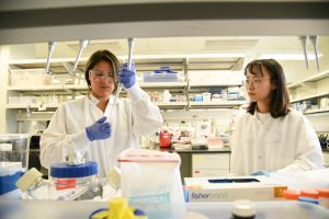 Student Yesenia Che works with doctoral student Xiaolu Li in the Bioproducts, Sciences and Engineering Laboratory as part of her Chancellor's Summer Scholars experience.