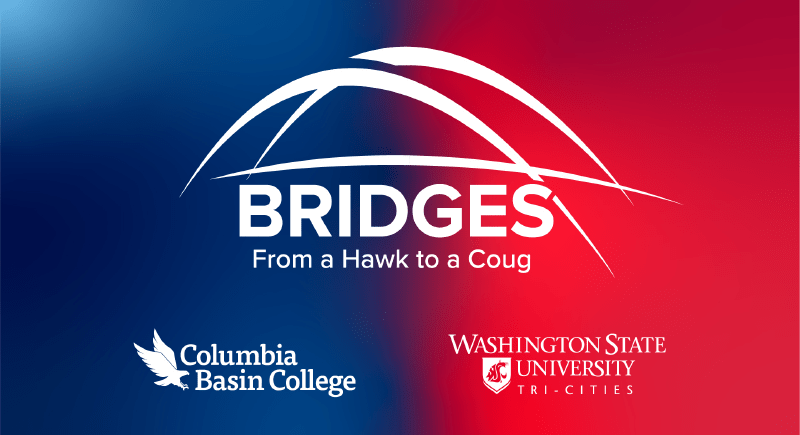 Bridges program logo
