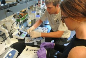 Madeleine Higgins and WSU alumnus Connor Eck conduct research at the Ste. Michelle Wine Estates WSU Wine Science Center