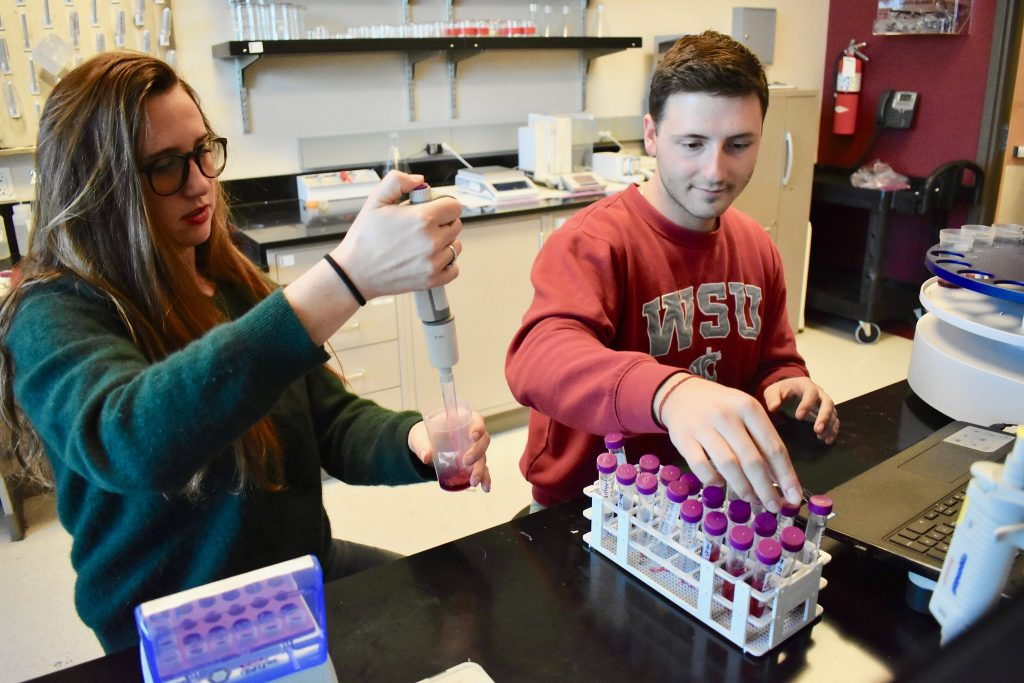 Madeleine Higgins and fellow student Ioan Gitsov conduct research in the Ste Michelle Wine Estates WSU Wine Science Center at WSU Tri-Cities.