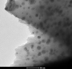 Nano catalysts from nanocrystalline cellulose