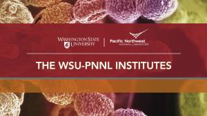 WSU-PNNL Institutes