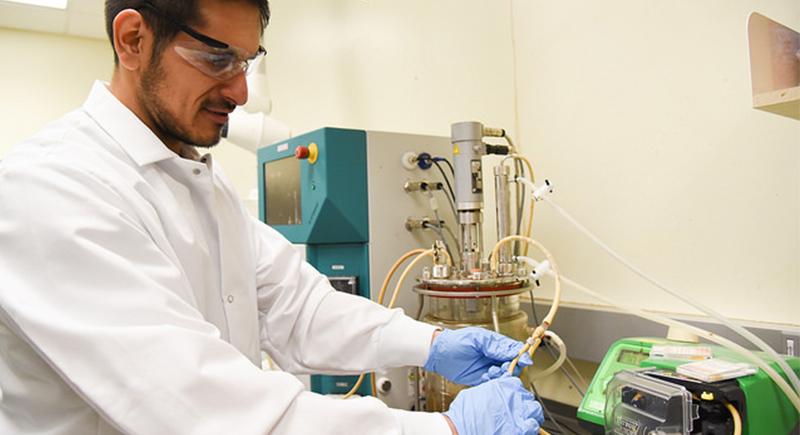 Sebastian Fernandez - biofuels
