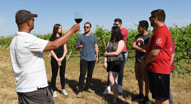 Students at the Albert Ravenholt Research and Teaching Vineyard at WSU Tri-Cities