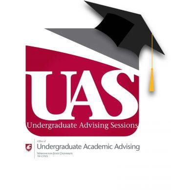 Undergraduate Advising Session