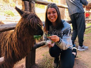 Kenzie McNeel poses for a photo with an alpaca while studying in Peru with the WSU College of Nursing.