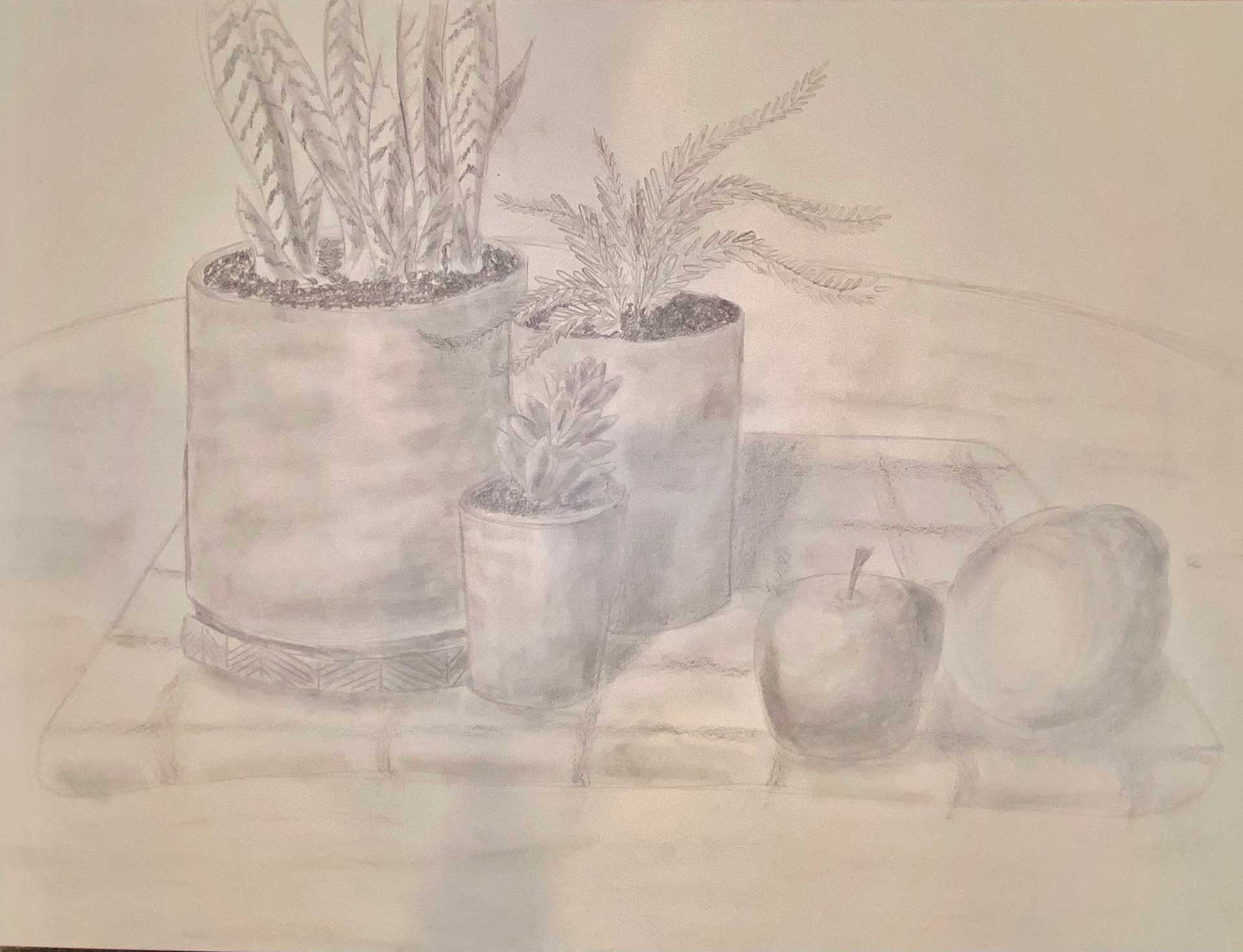 A graphite sketch composing of several potted plants, an apple, and an orange all situated on a plaid fabric.