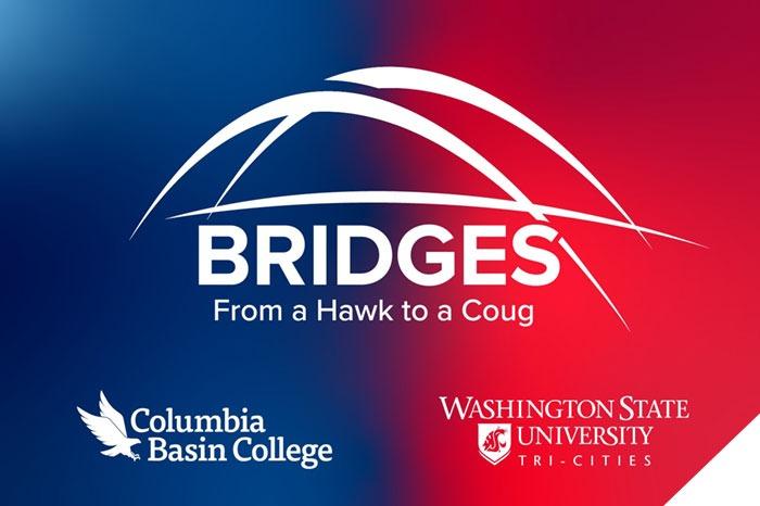 Bridges program